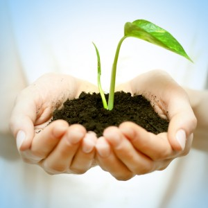 Hands holding soil and bloom - Generosity Gameplan